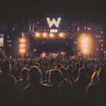 The Ultimate Guide to Wanderland Magic